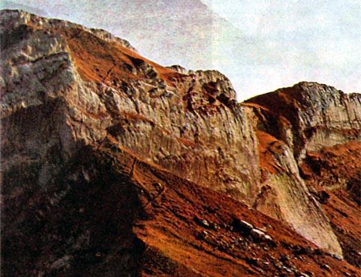 Фото №1 - На склонах Альп