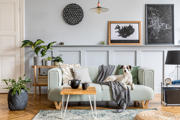 Фото №10 - My Space: 9 ошибок в интерьере, которые угрожают красоте и безопасности твоей квартиры
