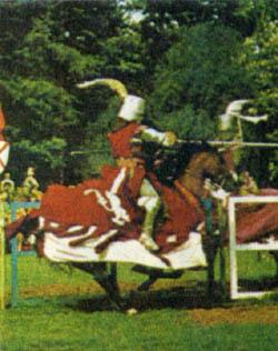 Фото №3 - Средневековый биатлон