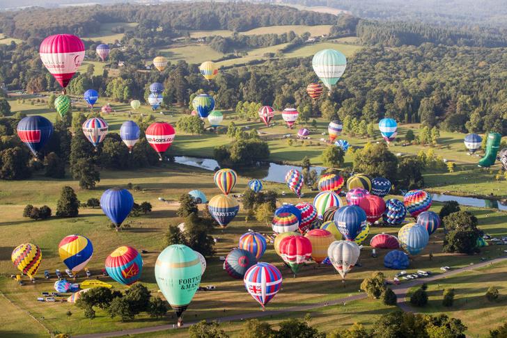 Фото №1 - Воздушные шары уходят в небо