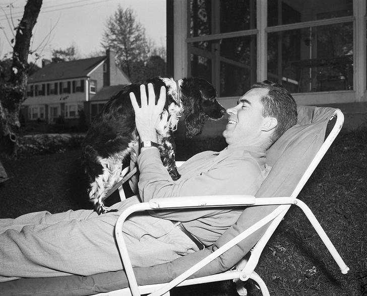 Фото №1 - Как спаниель спас карьеру будущего президента США Ричарда Никсона