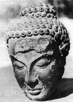 Фото №3 - Командировка в каменный век