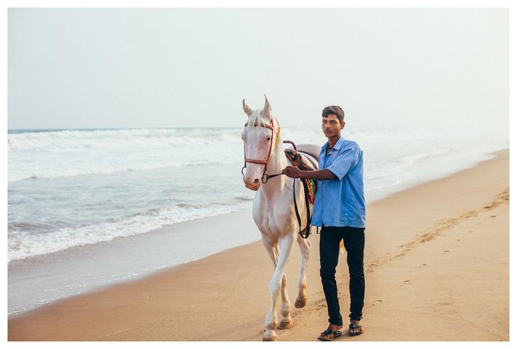 Фото №8 - Личный опыт: как уехать в Индию, чтобы помогать больным и бездомным