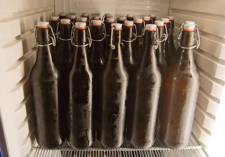 Фото №1 - Ученые предупредили о дефиците пива