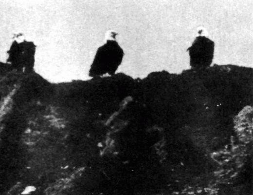 """Фото №1 - """"Падшие"""" орланы"""