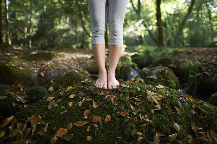 Green therapy: the healing power of nature