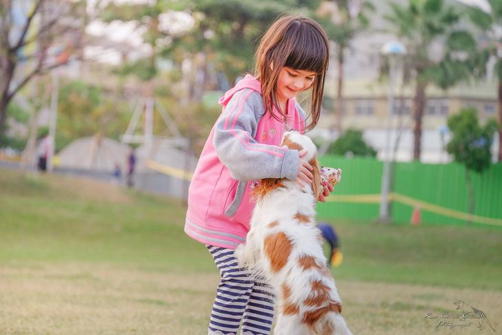 Фото №1 - 5 правил общения с собакой, которым нужно научить детей