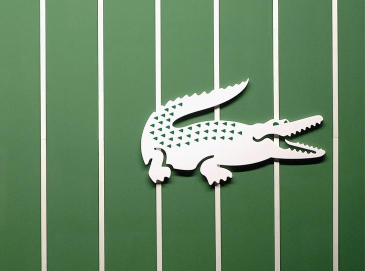 Фото №1 - «Жизнь – это красивый вид спорта»: 10 самых интересных фактов о Lacoste