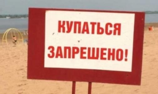 Фото №1 - Лето-2013: Утонули 17 петербуржцев, 42 ребенка выпали из окон