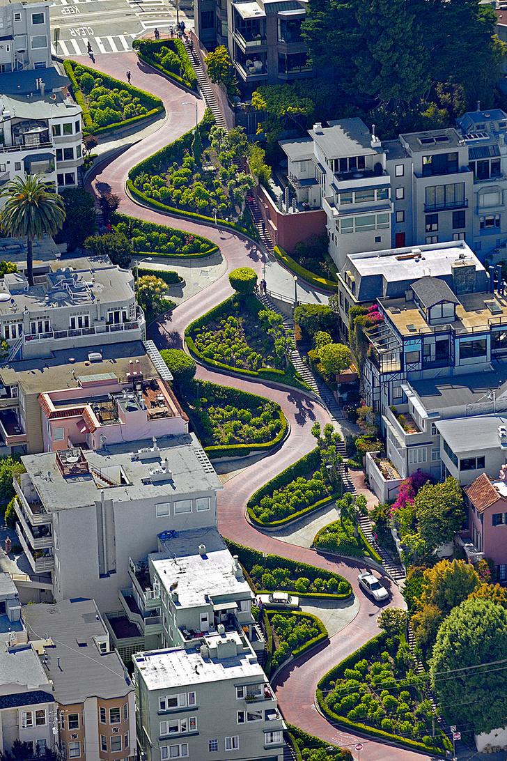 Фото №1 - Где находится самая извилистая улица?