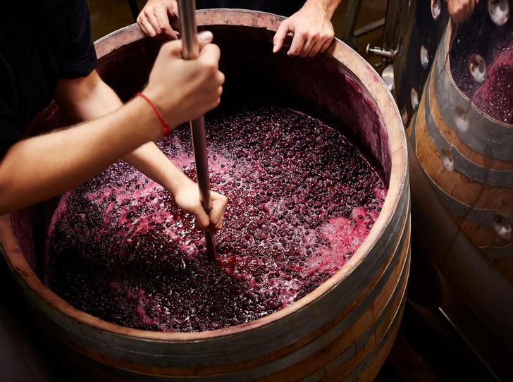 Фото №4 - Идеальное сочетание: как подобрать вино к стейку