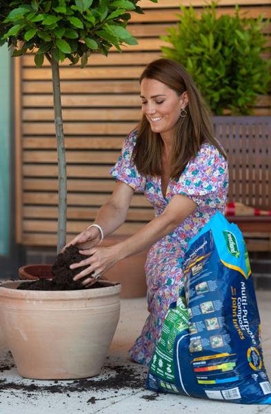 Фото №2 - Герцогиня грязи не боится: Кейт Миддлтон в красивом платье посадила деревья