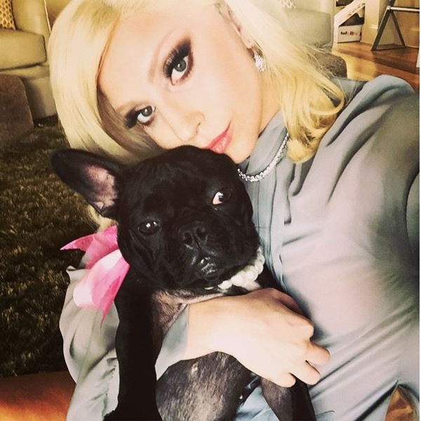 Фото №3 - Бьюти-эволюция: как Леди Гага хорошеет от любви