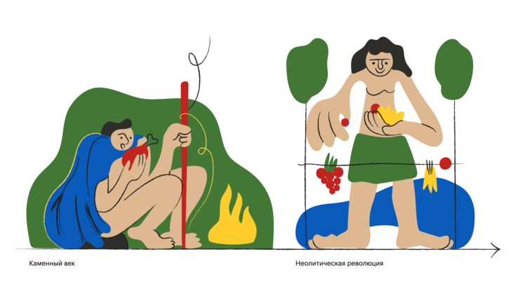 Фото №1 - Эволюция еды: история человечества, разложенная по тарелкам