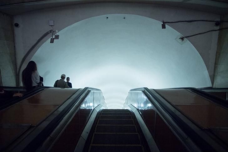 Фото №1 - В метро Москвы и Нью-Йорка живут одинаковые микробы