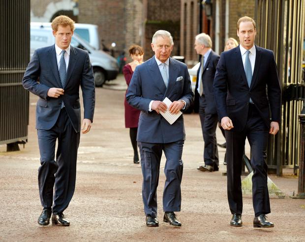 Фото №9 - Монарх нового времени: каким королем будет принц Уильям (и как он изменит Корону)