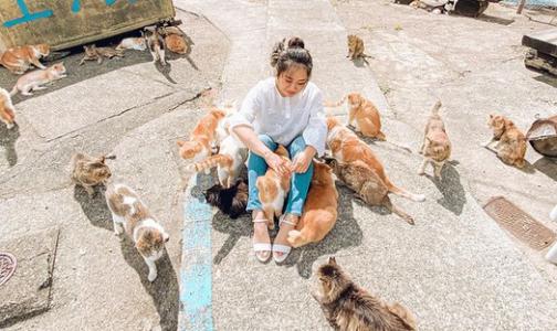 Фото №1 - Одно посещение необычного японского острова заменяет 10 сеансов психотерапии. В чем его секрет и почему на Тасиро едут 22 февраля