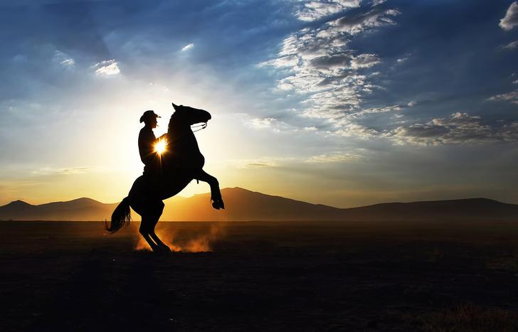 Фото №1 - Настоящий ковбой