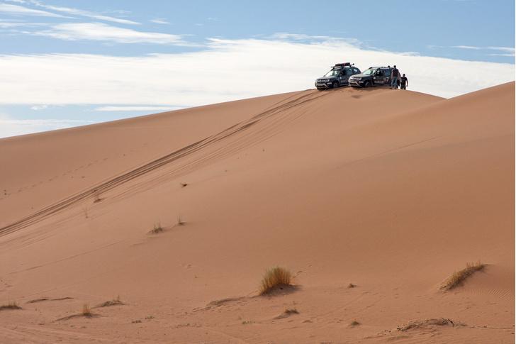 Фото №9 - Renault Duster: до Сахары подбросишь?