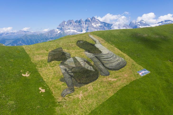 Фото №1 - Биокартины на склонах Альп