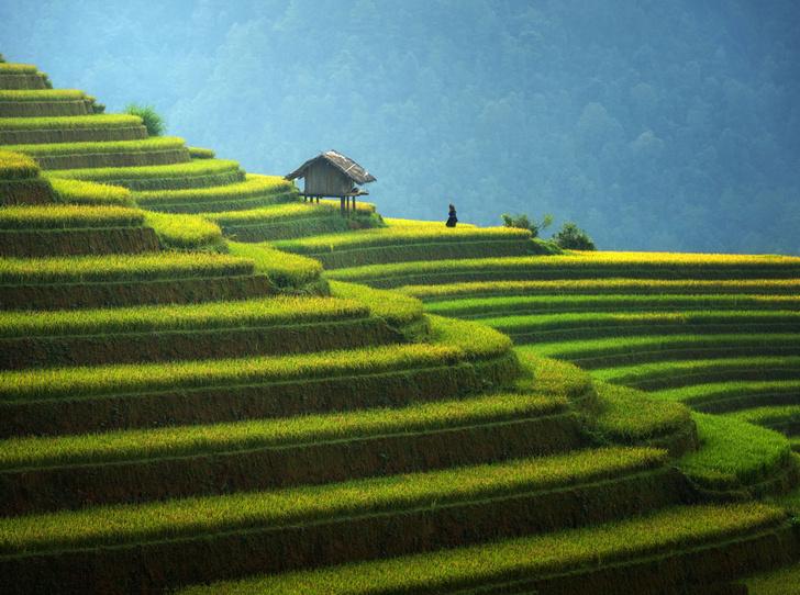 Фото №3 - Slow life на Бали: что это и чем она так привлекает европейцев