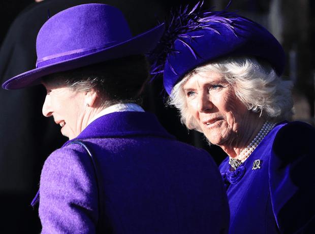 Фото №1 - Одним цветом: с принцессой Анной и герцогиней Камиллой случился модный конфуз (но они не расстроились)