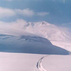 Фото №2 - Камчатку занесло снегом