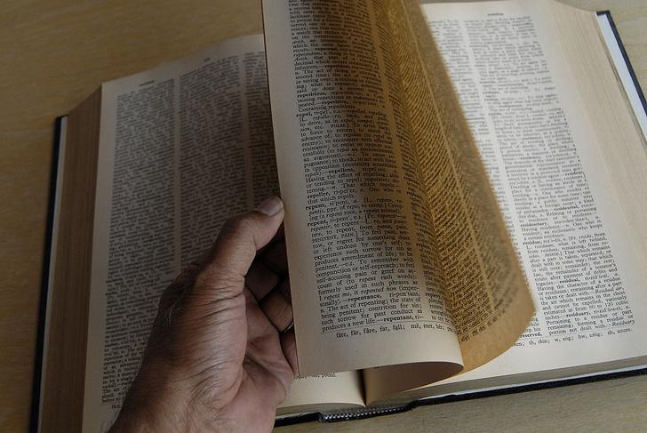Фото №1 - «Оксфордский словарь» пополнился новыми словами