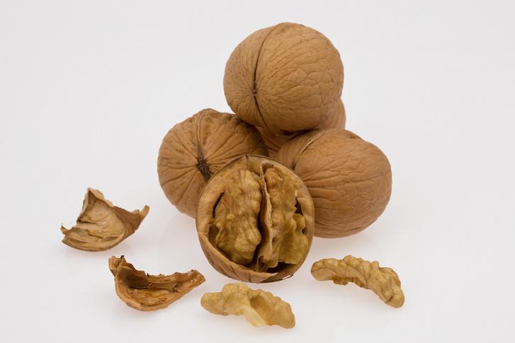 Фото №1 - Ученые рассказали о пользе грецких орехов