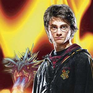 Фото №1 - Книги о Гарри Поттере стоят не меньше 20 тыс фунтов