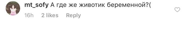 Фото №8 - Регина Тодоренко беременна?
