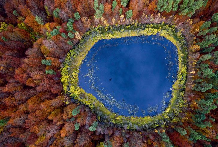 Фото №1 - Один кадр: Польша