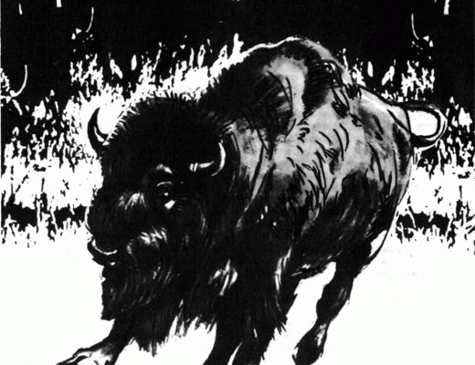 Фото №1 - Конец бизоньей тропы
