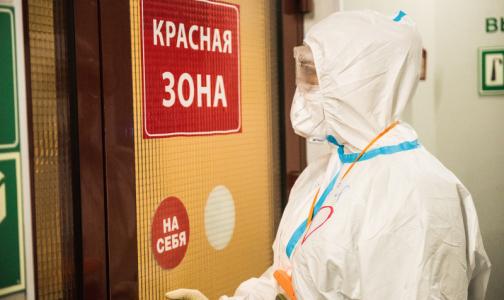 Фото №1 - Центр им. Соколова снова начнет принимать петербуржцев с ковидом через неделю