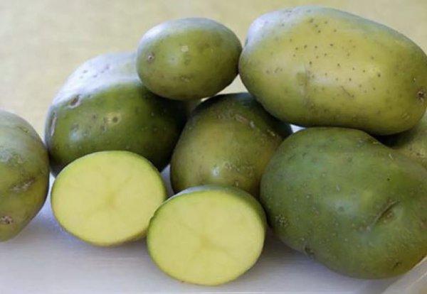 Фото №4 - 10 важных фактов про картофель