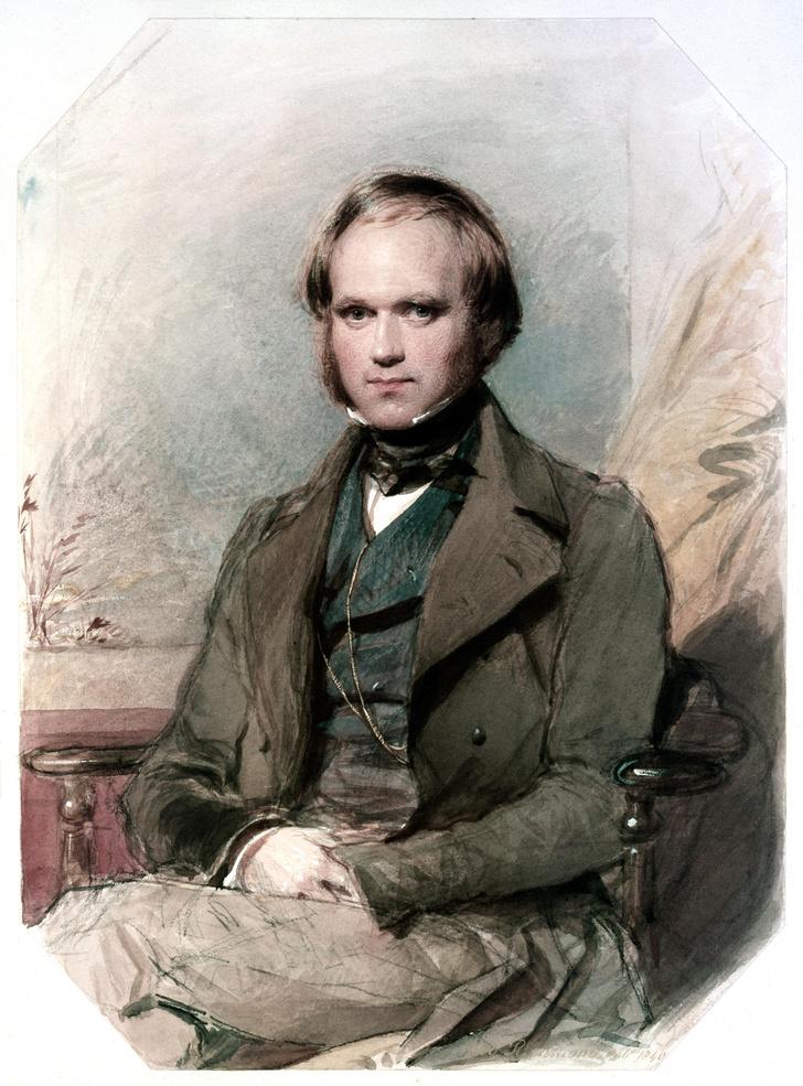 Фото №1 - Тест: так говорил Дарвин