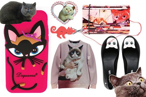 Фото №2 - Toп-10: Вещи с котиками