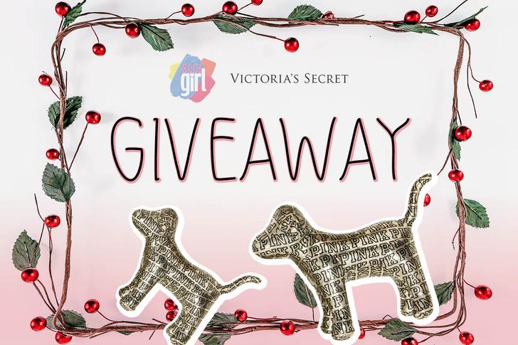 Фото №1 - Giveaway: выиграй собачку PINK от Victoria's Secret