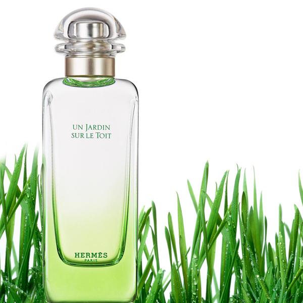 Фото №3 - 6 «зеленых» ароматов, которые выделят вас из толпы