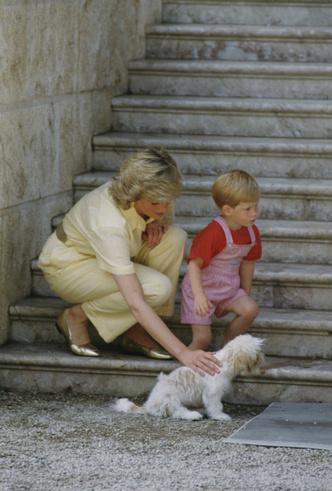 Фото №3 - Боль Гарри: что принц так и не смог простить королевской семье