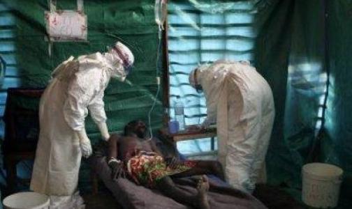 Фото №1 - Роспотребнадзор: Угрозы распространения лихорадки Эбола в России нет