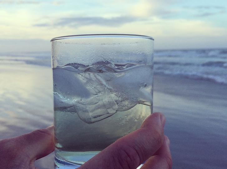 Фото №2 - Учимся пить воду в нужных количествах