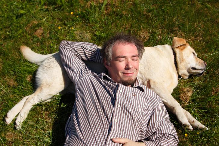 Фото №1 - Собаки могут распознавать приближение приступов гипогликемии у диабетиков