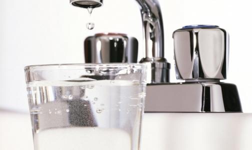 Фото №1 - Какую воду лучше пить в Петербурге