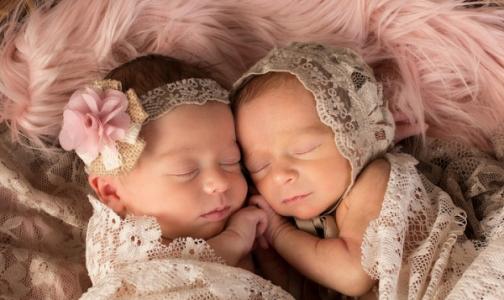 Фото №1 - Директор Института им. Отта: «Двойня» и «тройня» в ЭКО - не норма, детей надо рожать последовательно