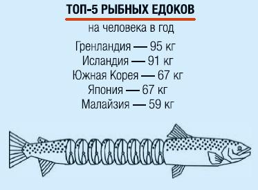 Фото №10 - Рыбный день
