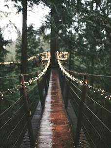 Фото №2 - Тест: Выбери мост, и мы скажем, куда он тебя приведет
