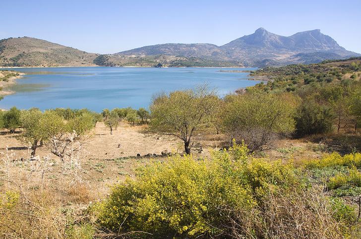 Фото №7 - Пламенное сердце Испании: гид по Андалусии. Часть 2