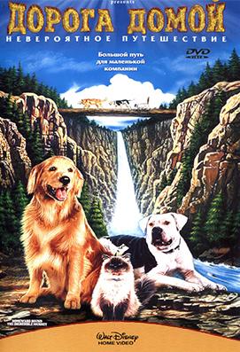 Фото №5 - Топ-10: Фильмы с говорящими животными