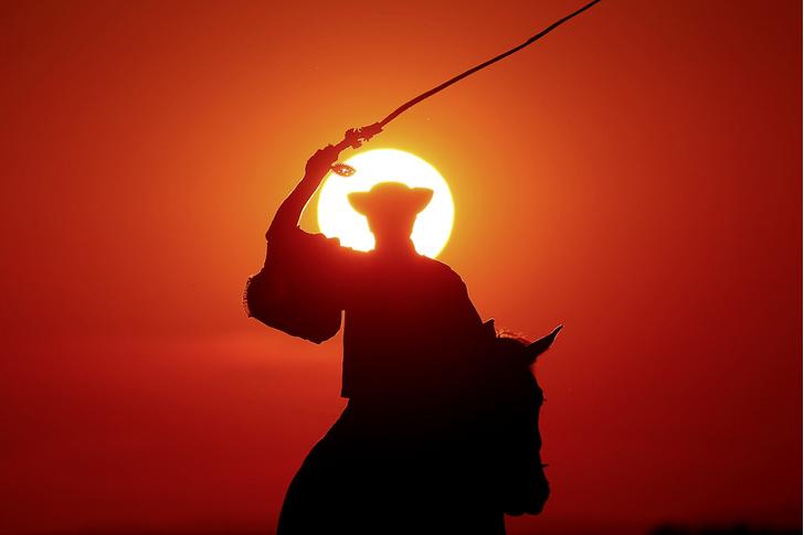 Фото №7 - Местные жители: пастушья воля